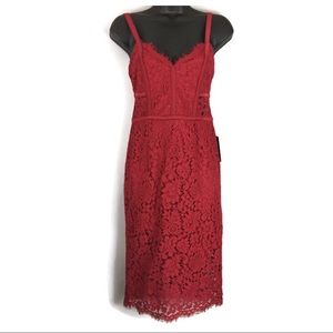Express Sexy Red Lace Dress with Sheer Panels
